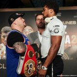 0-ruiz-joshua-weights6